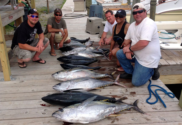 Offshore catch Of Tuna on Dock